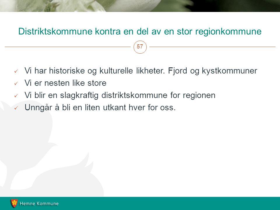 Distriktskommune kontra en del av en stor regionkommune 57 Vi har historiske og kulturelle likheter.
