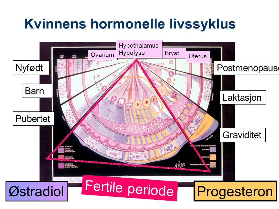 Kvinnens hormonelle livssyklus Nyfødt Barn Pubertet Graviditet Laktasjon Postmenopause Ovarium Hypothalamus Hypofyse Bryst Østradiol Progesteron Fertile periode Uterus
