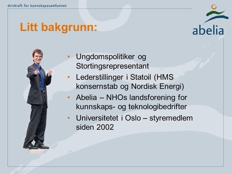 Litt bakgrunn: Ungdomspolitiker og Stortingsrepresentant Lederstillinger i Statoil (HMS konsernstab og Nordisk Energi) Abelia – NHOs landsforening for kunnskaps- og teknologibedrifter Universitetet i Oslo – styremedlem siden 2002