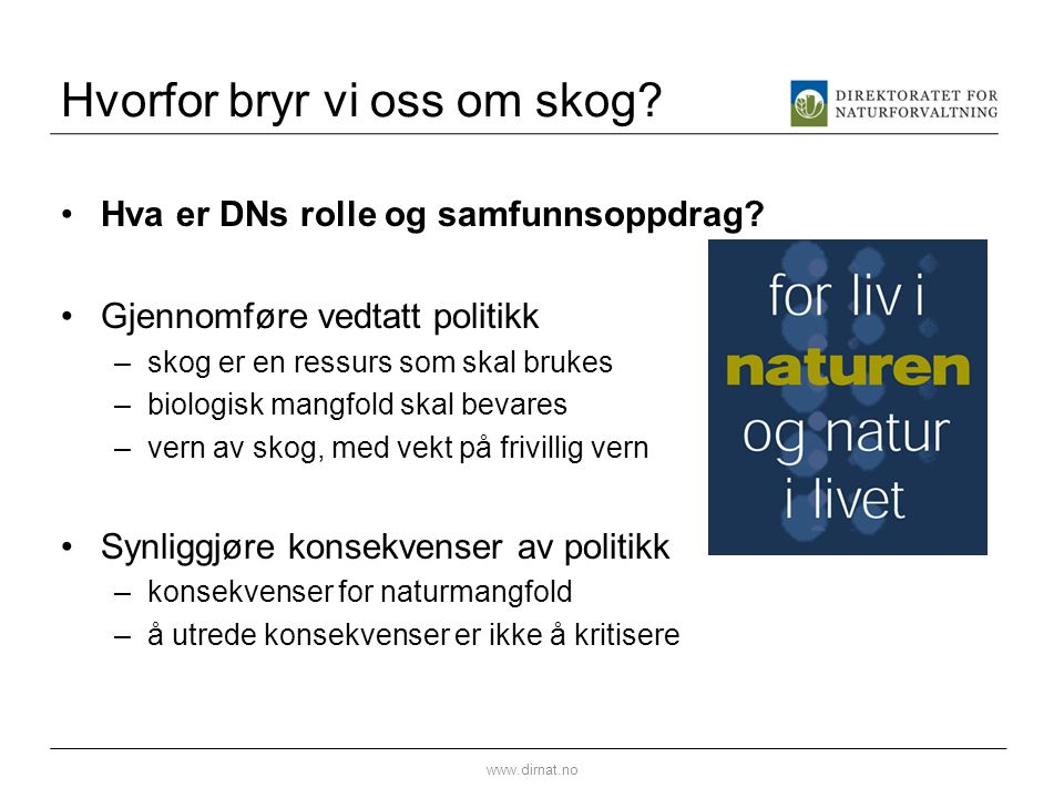 Hvorfor bryr vi oss om skog. Hva er DNs rolle og samfunnsoppdrag.