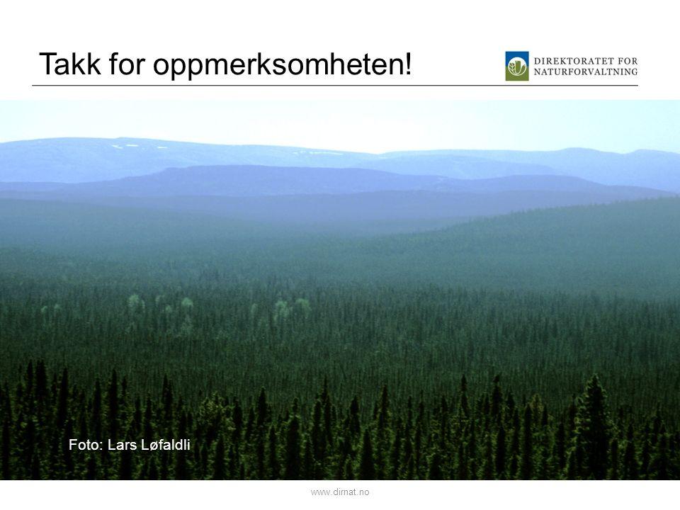 Takk for oppmerksomheten! www.dirnat.no Foto: Lars Løfaldli