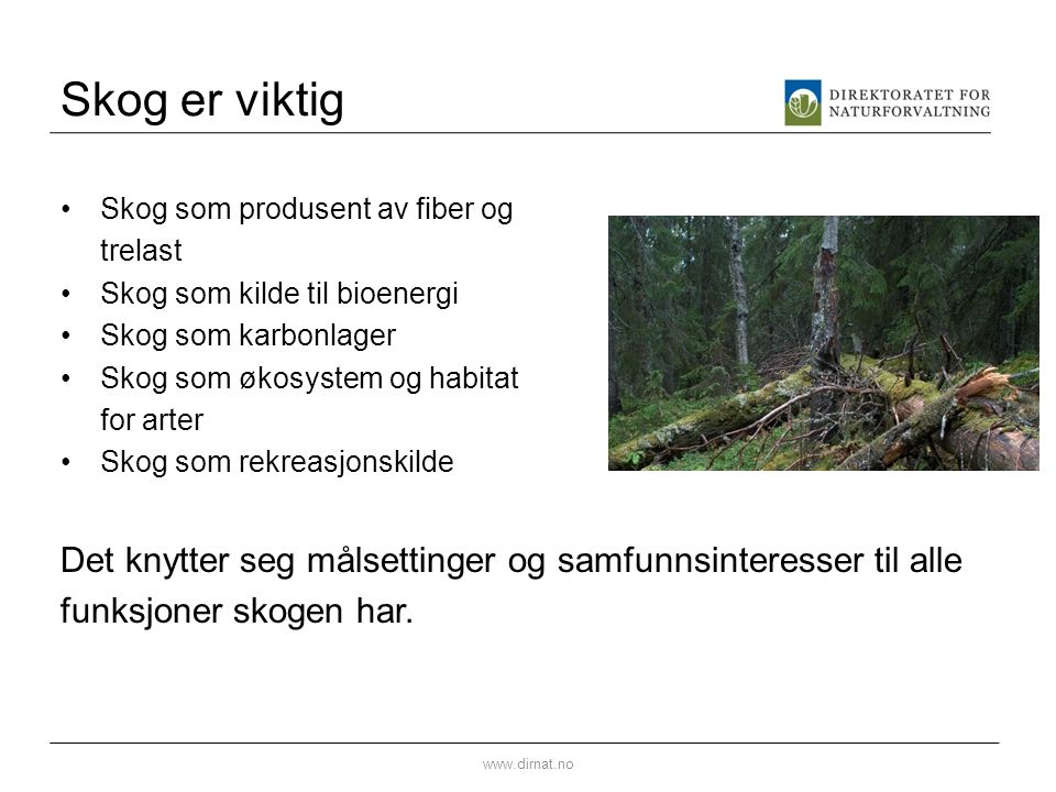 Skog er viktig Skog som produsent av fiber og trelast Skog som kilde til bioenergi Skog som karbonlager Skog som økosystem og habitat for arter Skog som rekreasjonskilde Det knytter seg målsettinger og samfunnsinteresser til alle funksjoner skogen har.