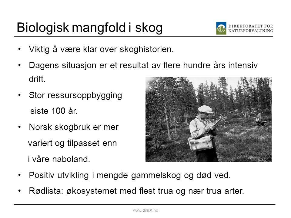 DN mener: Norge lever av verdiskaping, bl.a basert på naturressursene Skogbruk er en ønsket aktivitet med store ringvirkninger Skogen har vært hardt utnyttet i flere hundre år Tilveksten er stor og gir muligheter for framtiden Effektivt skogbruk krever effektivt vegnett Skogbruket har innført mange gode ordninger for å ta miljøhensyn Skogen er sentral i klimasammenheng  Dette er en del av rammene som hele miljøforvaltningen skal arbeide innenfor www.dirnat.no