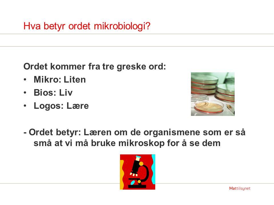 Hva betyr ordet mikrobiologi.