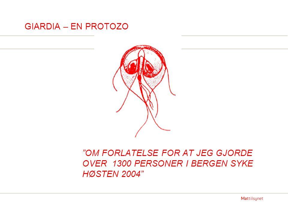 GIARDIA – EN PROTOZO OM FORLATELSE FOR AT JEG GJORDE OVER 1300 PERSONER I BERGEN SYKE HØSTEN 2004
