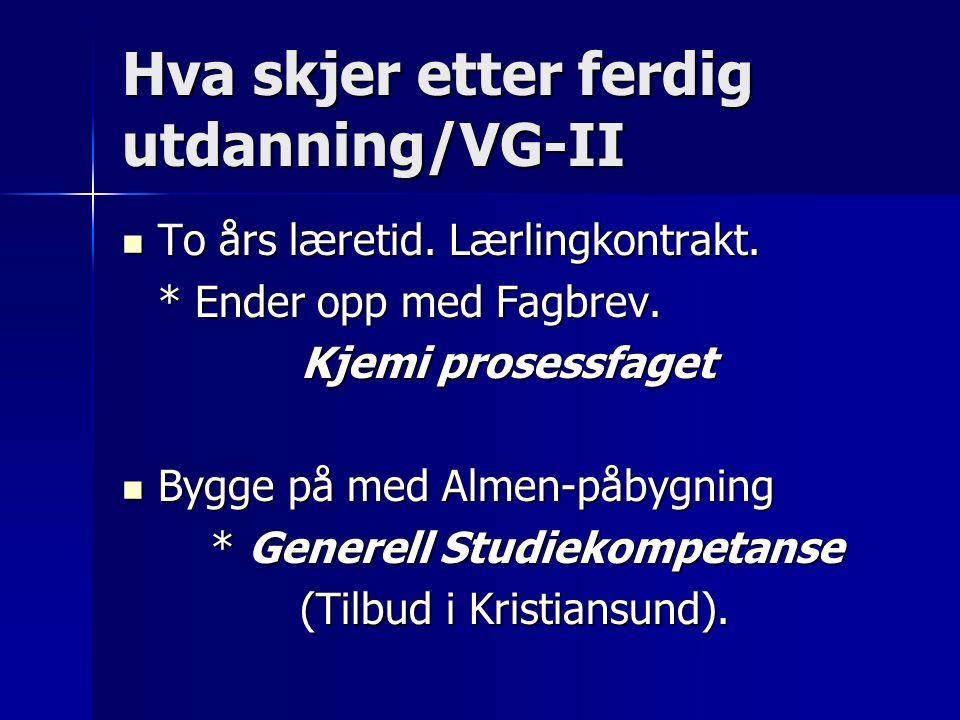 Hva skjer etter ferdig utdanning/VG-II To års læretid.