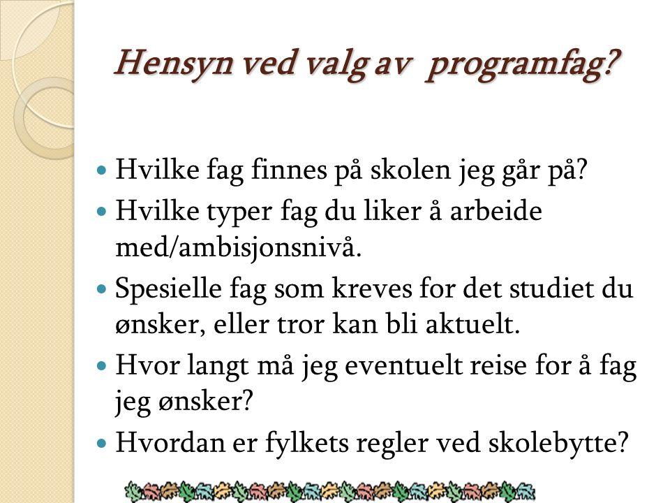 Alternative veier etter Vg1: IKT- servicefag (fra SS) Dette er fag med 2 år læretid etter Vg2