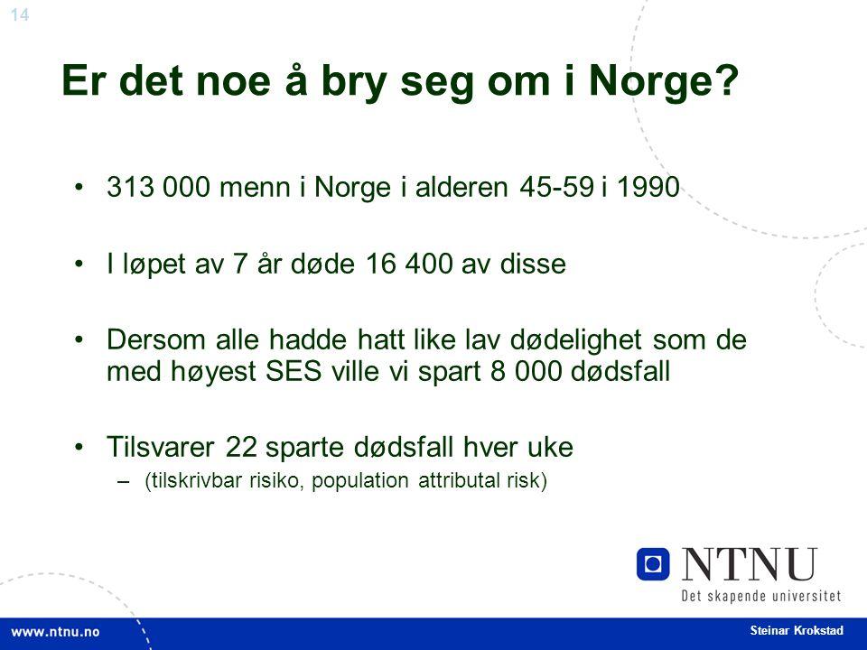 14 Steinar Krokstad Er det noe å bry seg om i Norge.