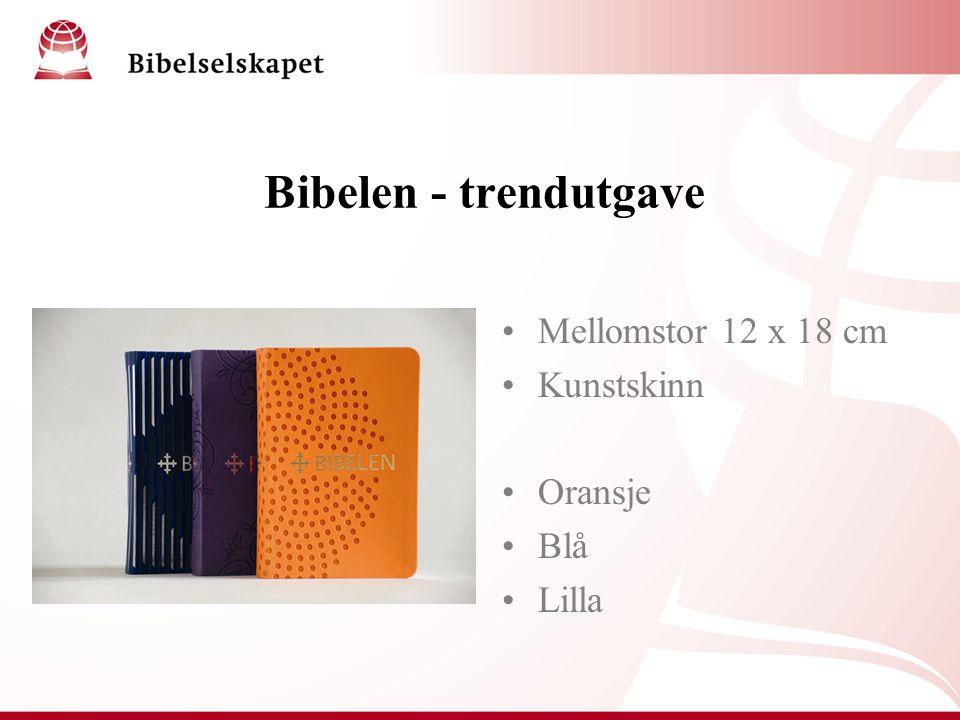 Bibelen - trendutgave Mellomstor 12 x 18 cm Kunstskinn Oransje Blå Lilla