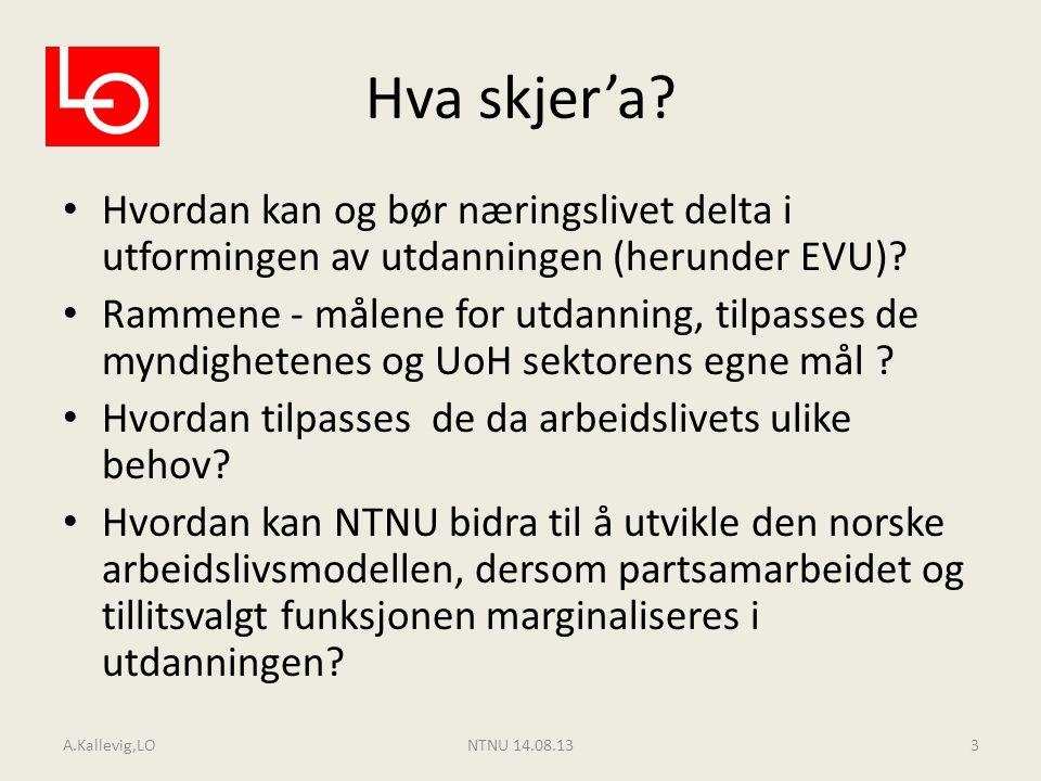 Flere spørsmål MIT – samarbeid mellom akademi og næringsliv som modell for det norske.