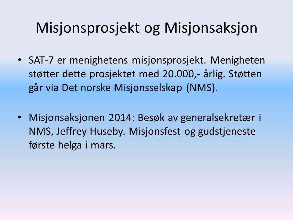 Misjonsprosjekt og Misjonsaksjon SAT-7 er menighetens misjonsprosjekt. Menigheten støtter dette prosjektet med 20.000,- årlig. Støtten går via Det nor