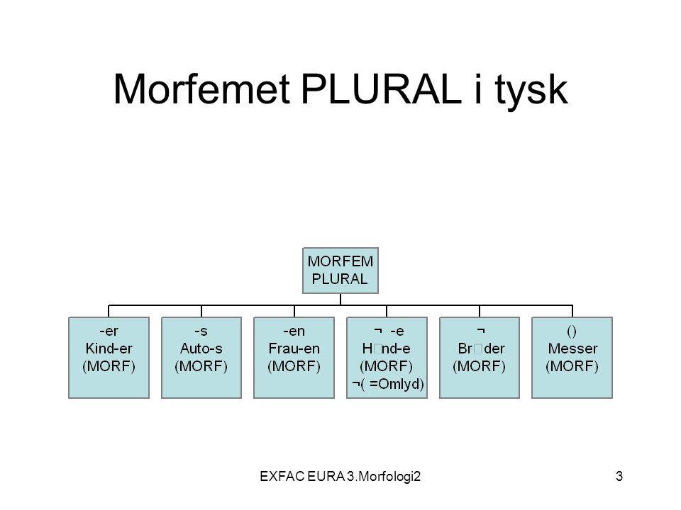 EXFAC EURA 3.Morfologi234 Finitt – infinitt.