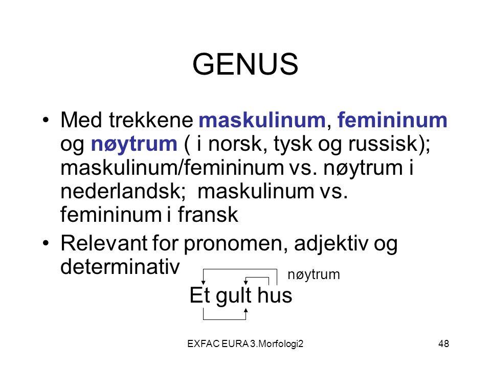 EXFAC EURA 3.Morfologi248 GENUS Med trekkene maskulinum, femininum og nøytrum ( i norsk, tysk og russisk); maskulinum/femininum vs. nøytrum i nederlan