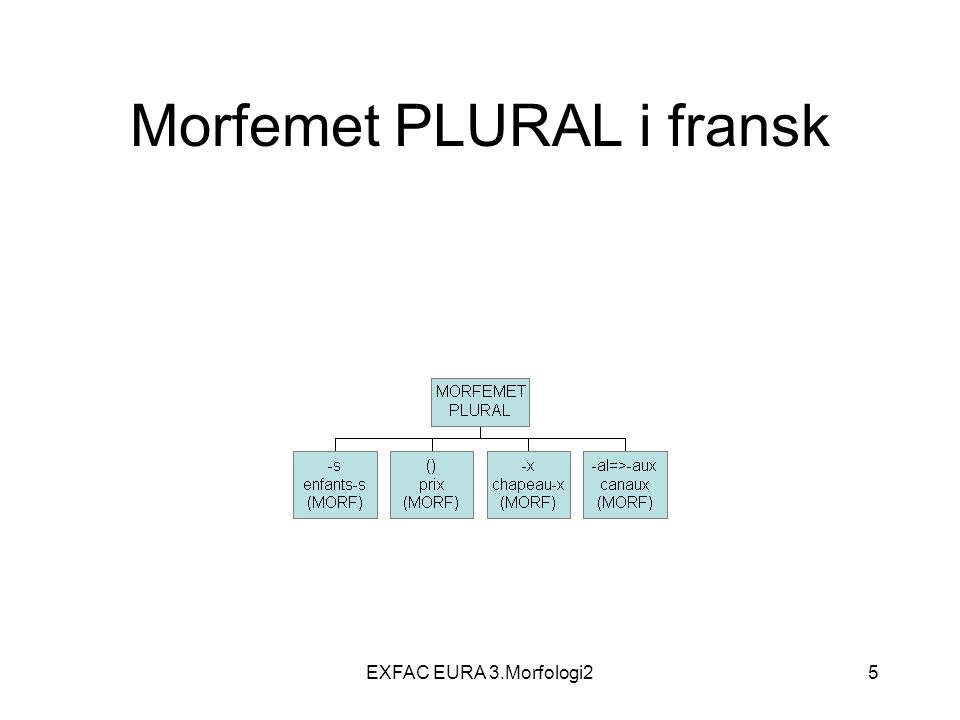 EXFAC EURA 3.Morfologi216 Ordklasser N, Adj, Det, Pron, V, P(rep), Adv, Kon, Sub, –S=Substantiv, => N=Nomen –Adj=Adjektiv, –Det=Determinativ (artikkel, bestemmelsesord) –Pron=Pronomen –V=Verb –P=preposisjon –Adv=Adverb –Kon= Konjunksjon –Sub=Subjunksjon –Int= Interjeksjon
