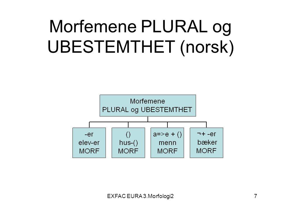 EXFAC EURA 3.Morfologi238 Adverb lentement, quickly, oft, sehr, meget, ofte Forholder seg til et annet element i setningen eller til setningen som helhet (ikke, aldri); sier noe om hvordan handlingen finner sted, modifiserer tilstanden/handlingen som er beskrevet Kan ha adverb som underledd: furchtbar oft, veldig ofte Ubøyelig