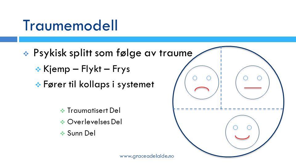 Traumemodell  Psykisk splitt som følge av traume  Kjemp – Flykt – Frys  Fører til kollaps i systemet  Traumatisert Del  Overlevelses Del  Sunn Del www.graceadelaide.no