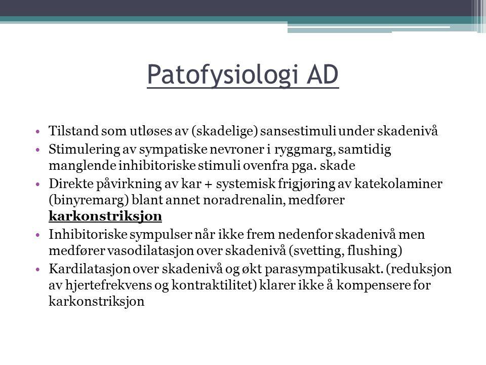 Patofysiologi AD Tilstand som utløses av (skadelige) sansestimuli under skadenivå Stimulering av sympatiske nevroner i ryggmarg, samtidig manglende in