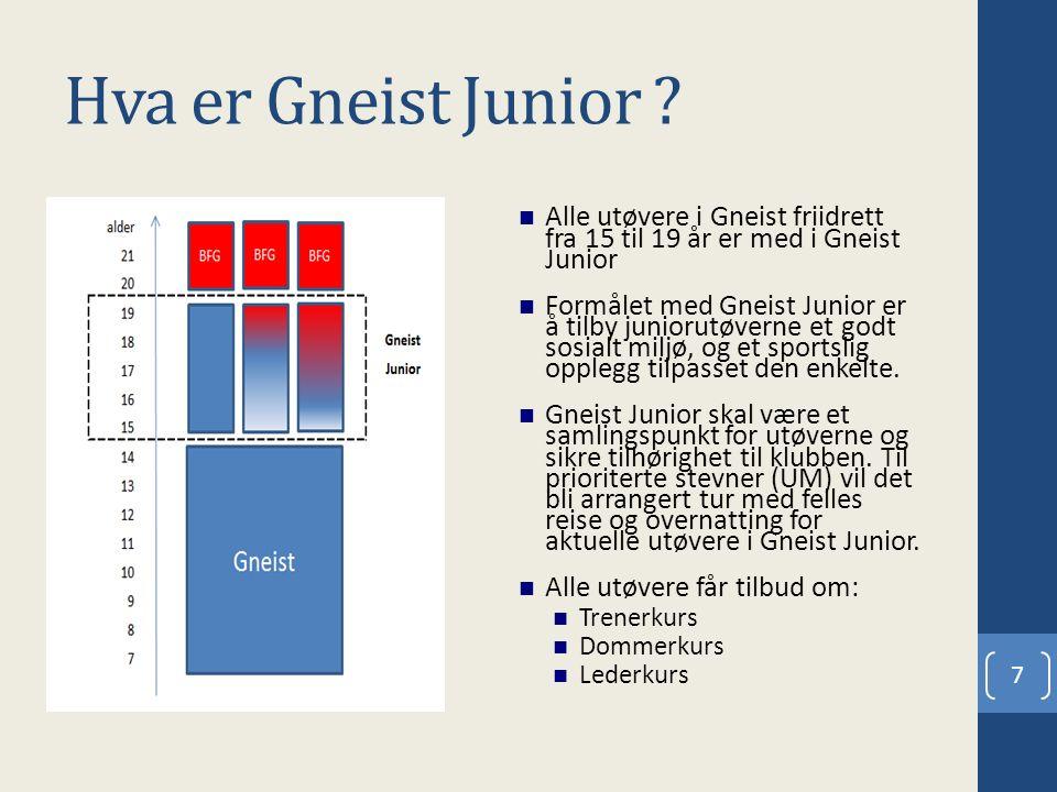 Hva er Gneist Junior ? Alle utøvere i Gneist friidrett fra 15 til 19 år er med i Gneist Junior Formålet med Gneist Junior er å tilby juniorutøverne et