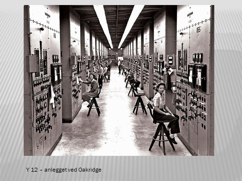 Prosjektet baserte seg på frykten for at Tyskland allerede på 1930-tallet hadde planer om å utvikle atomvåpen.