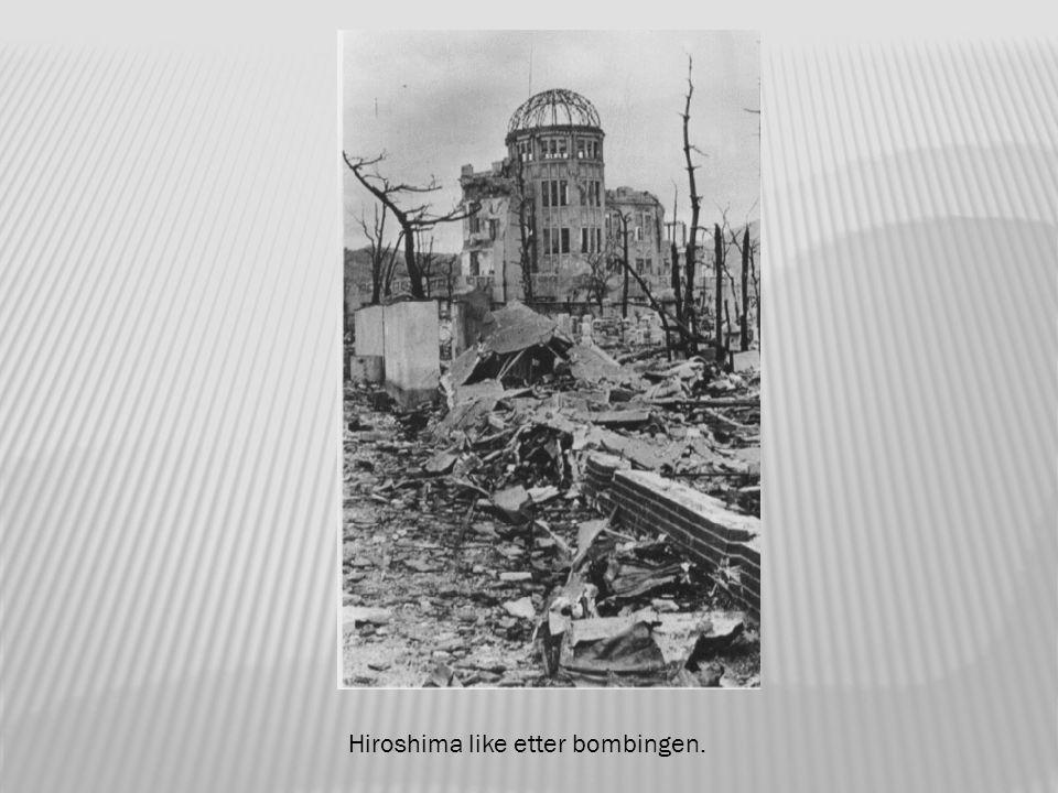 Hiroshima dagen derpå.