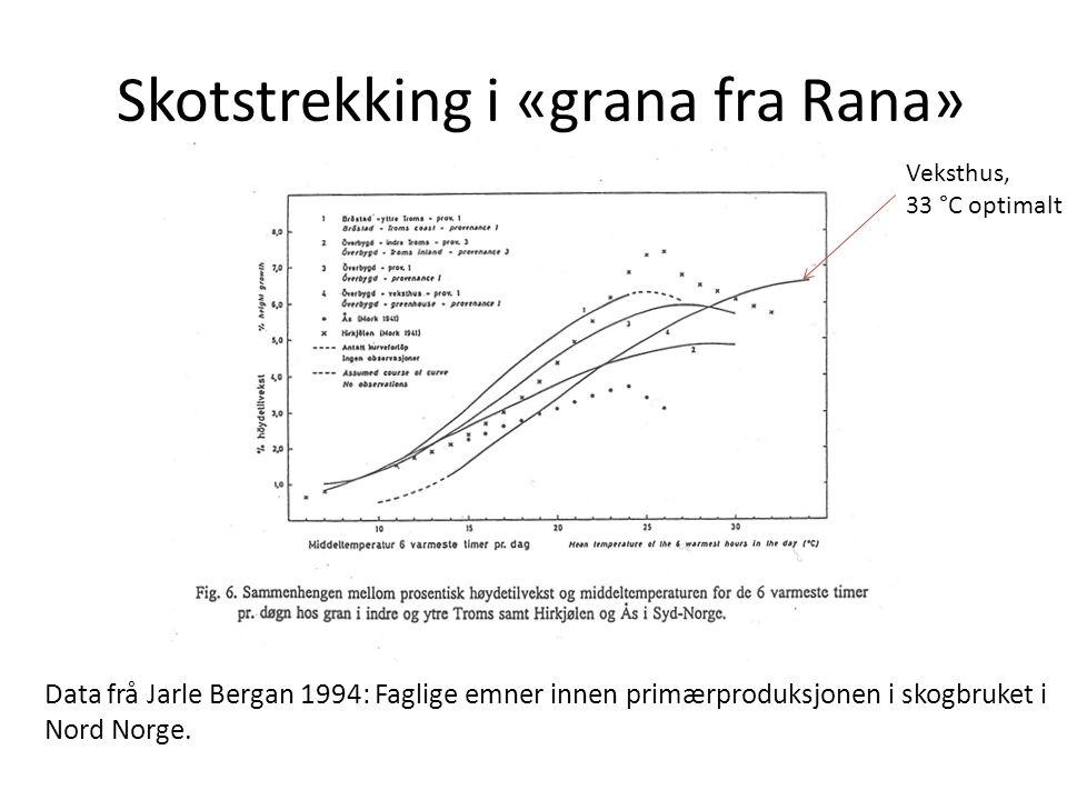 Skotstrekking i «grana fra Rana» Veksthus, 33 °C optimalt Data frå Jarle Bergan 1994: Faglige emner innen primærproduksjonen i skogbruket i Nord Norge.
