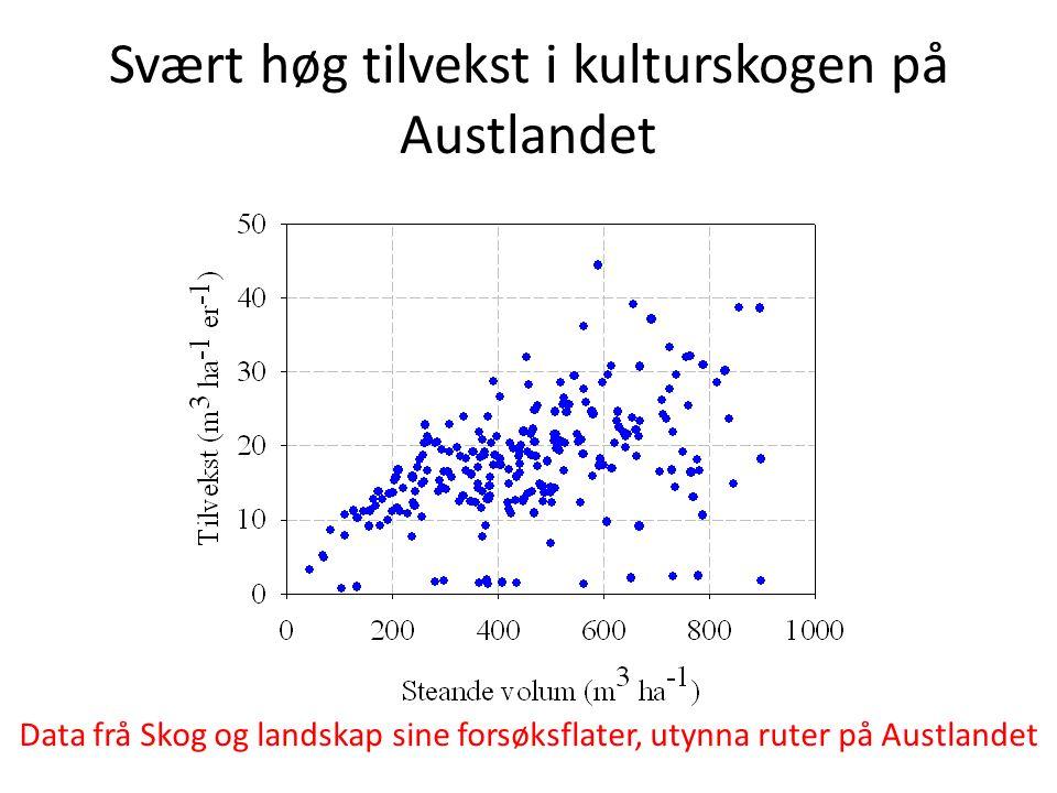 Svært høg tilvekst i kulturskogen på Austlandet Data frå Skog og landskap sine forsøksflater, utynna ruter på Austlandet