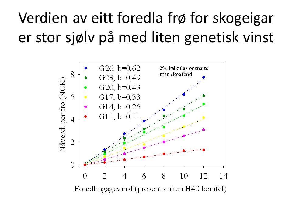 Verdien av eitt foredla frø for skogeigar er stor sjølv på med liten genetisk vinst