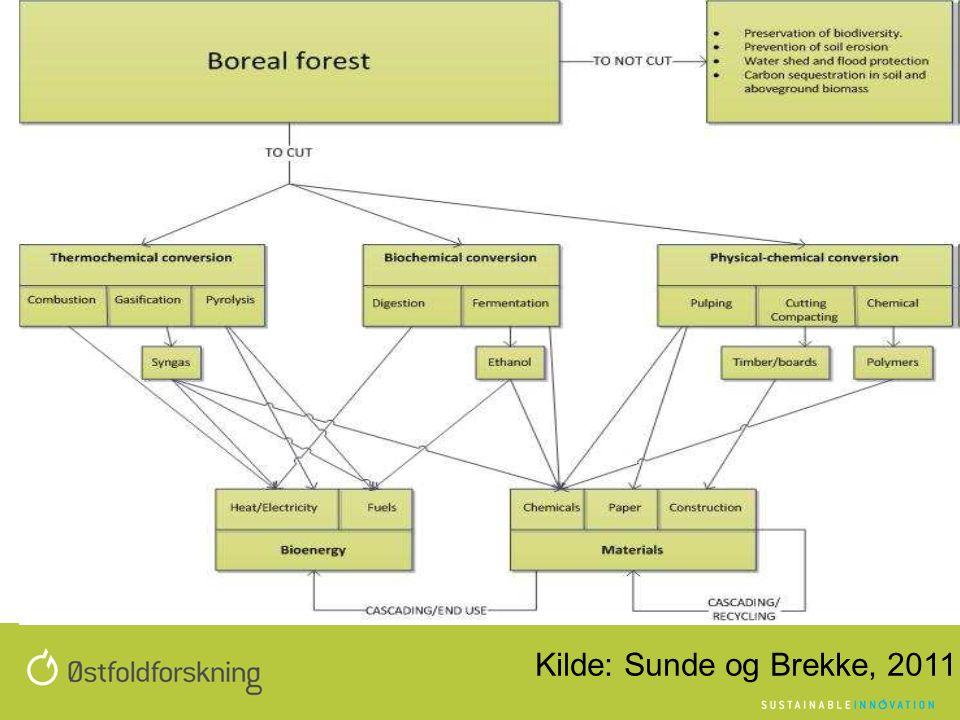 Kilde: Sunde og Brekke, 2011