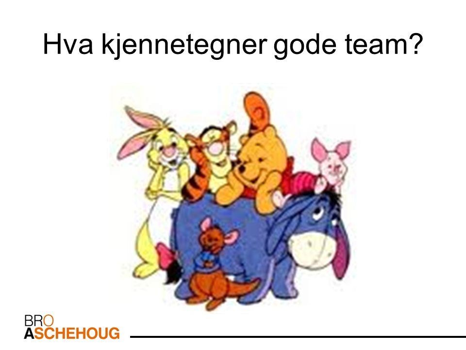Hva kjennetegner gode team