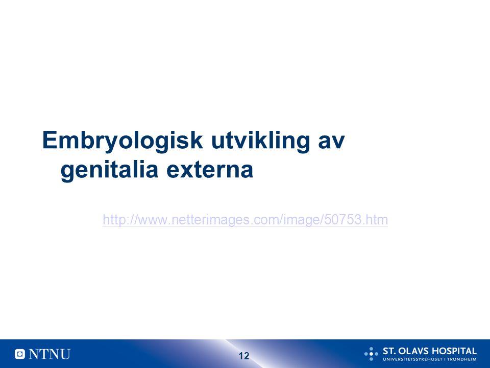 11 Ovarium Aktivt ovarium Funksjonelle follikler/ cyster Primordial follikler
