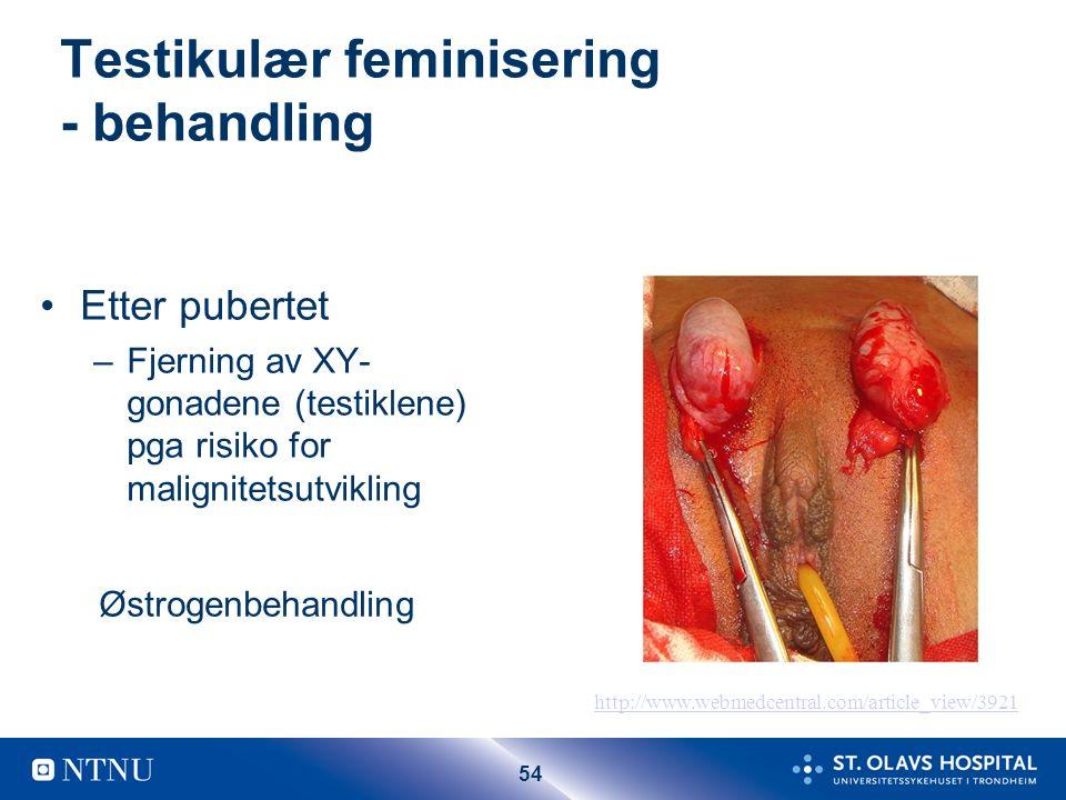 53 Testikulær feminisering 46 XY (androgen insensitivity) Mammae normale (testosteron kan omdannes til østradiol) Ingen aksille/ pubesbehåring Kort vagina Ingenuterus Evt.