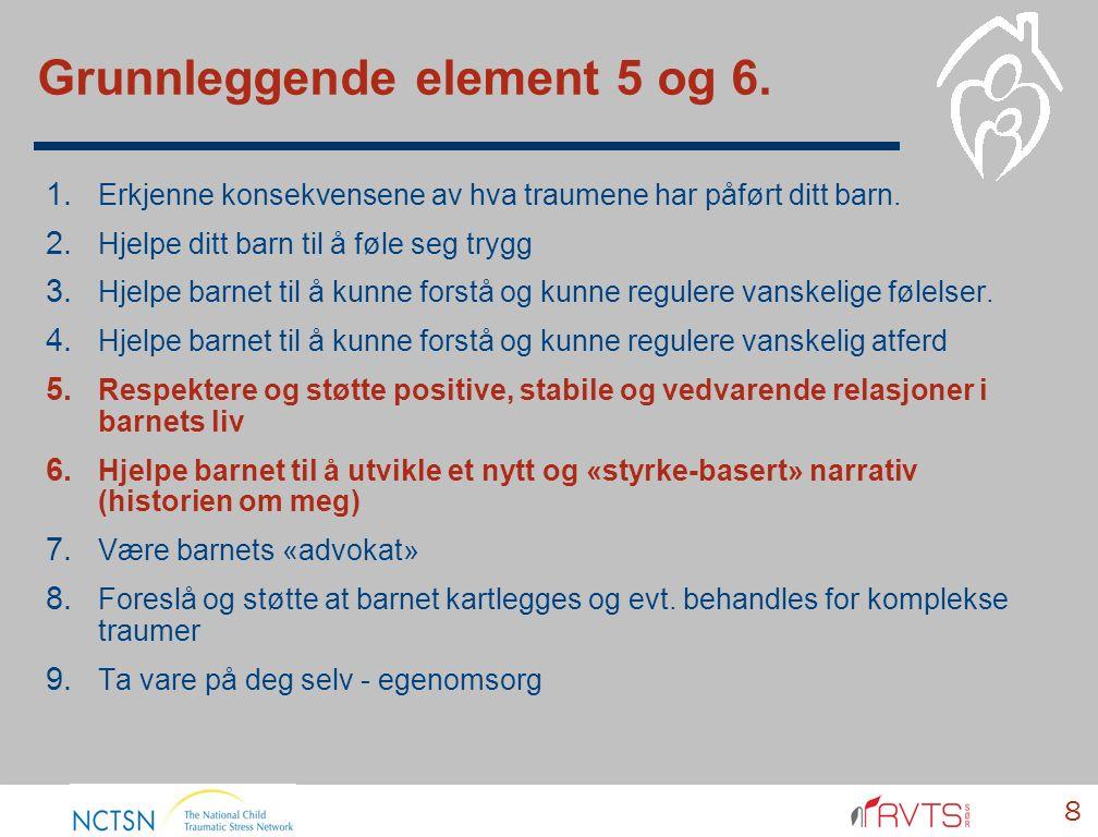Grunnleggende element 5 og 6. 8 1. Erkjenne konsekvensene av hva traumene har påført ditt barn.