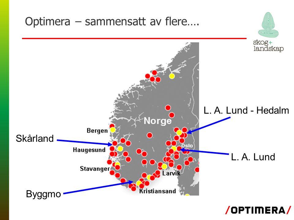 Optimera – sammensatt av flere…. L. A. Lund - Hedalm L. A. Lund Skårland Byggmo