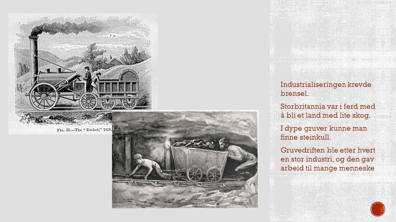 Industrialiseringen krevde brensel. Storbritannia var i ferd med å bli et land med lite skog. I dype gruver kunne man finne steinkull. Gruvedriften bl