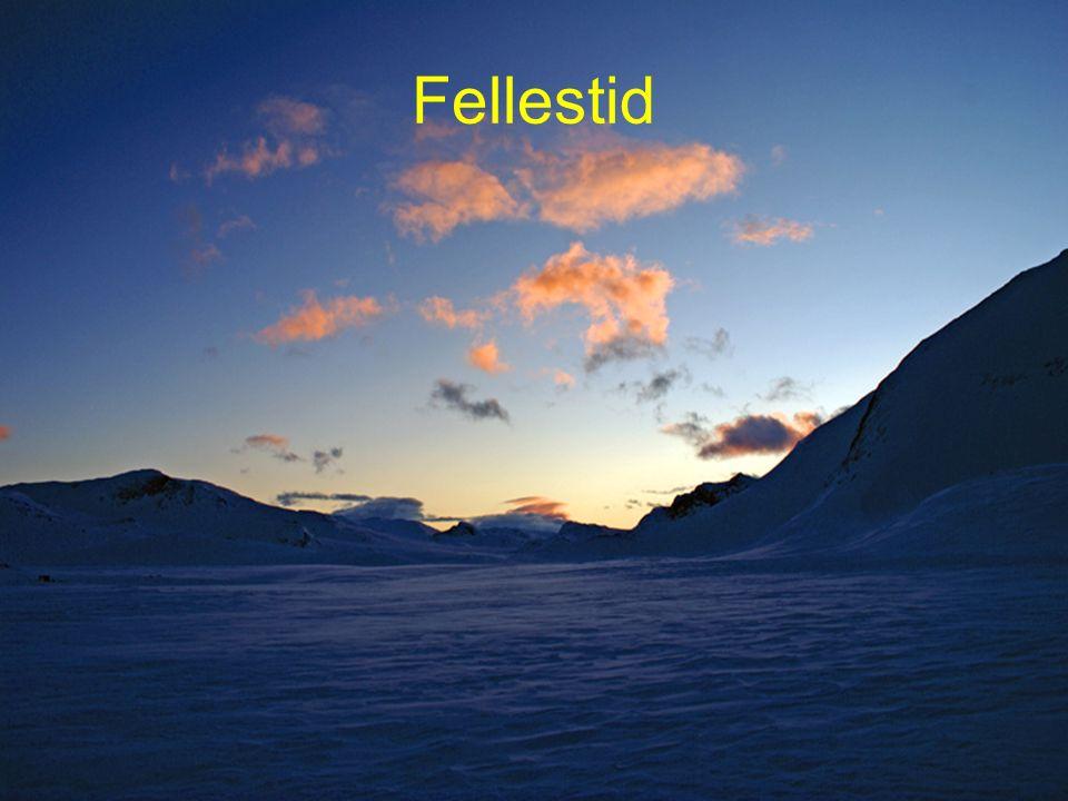 47 Fellestid