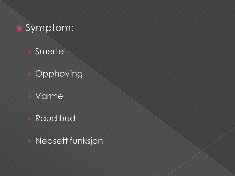  Symptom: › Smerte › Opphoving › Varme › Raud hud › Nedsett funksjon