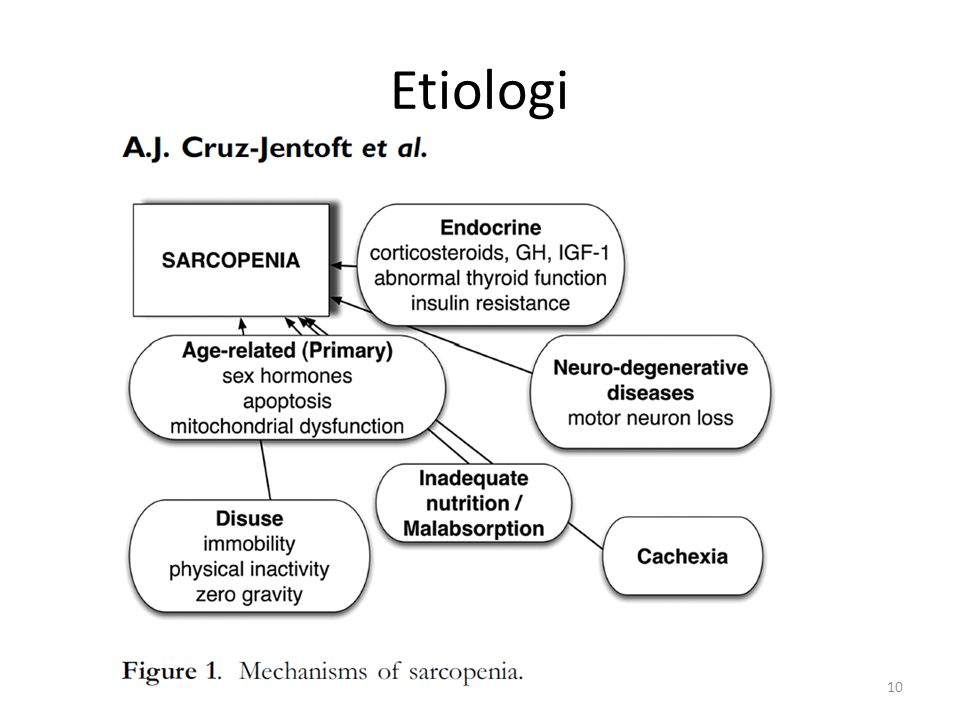 Etiologi 10