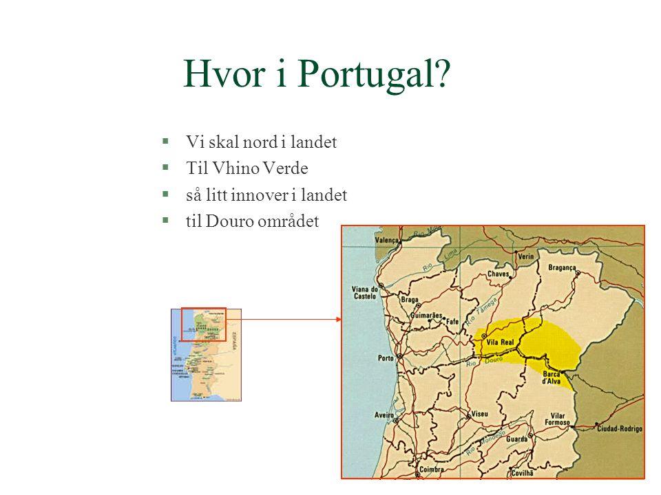 §Touriga Nacional §må vel regnes som Portugals drue nummer én.
