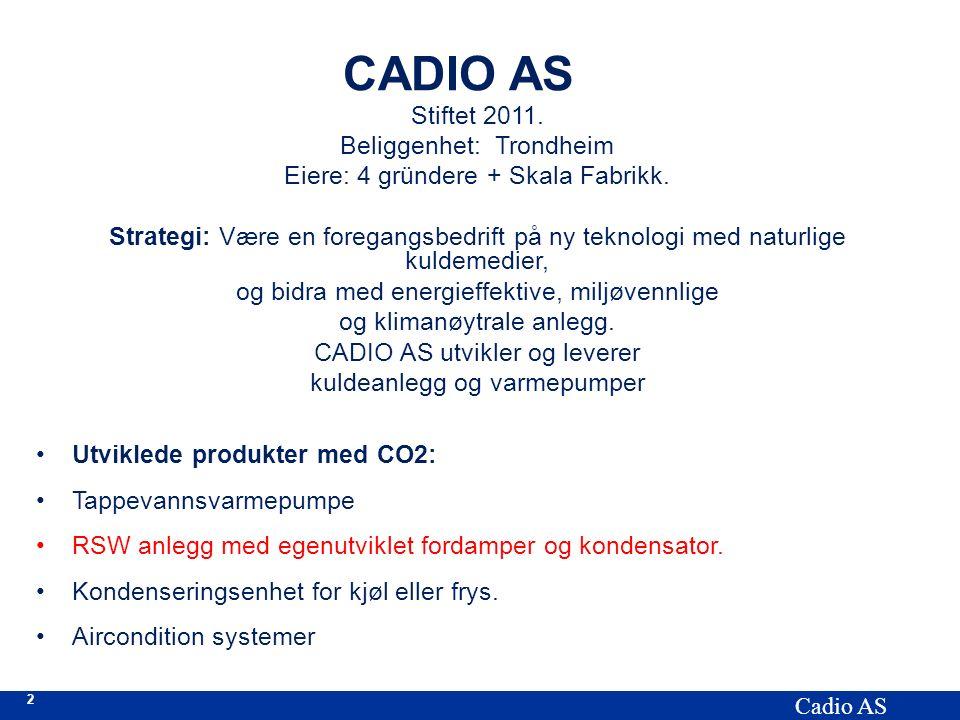 2 Cadio AS CADIO AS Stiftet 2011. Beliggenhet: Trondheim Eiere: 4 gründere + Skala Fabrikk. Strategi: Være en foregangsbedrift på ny teknologi med nat