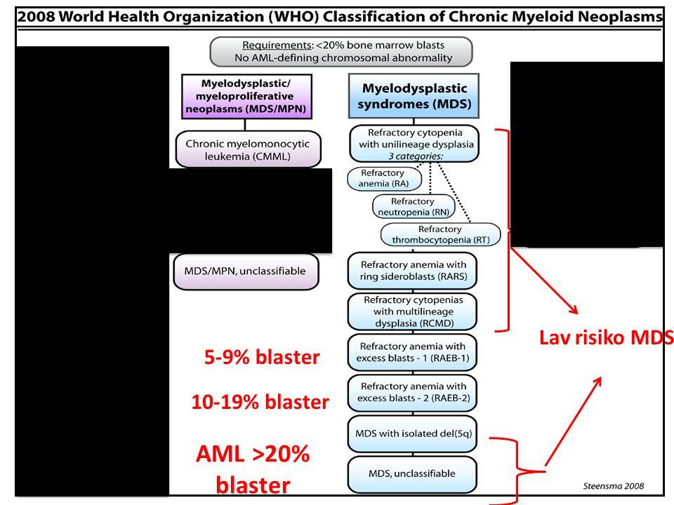 Lav risiko MDS 5-9% blaster 10-19% blaster AML >20% blaster