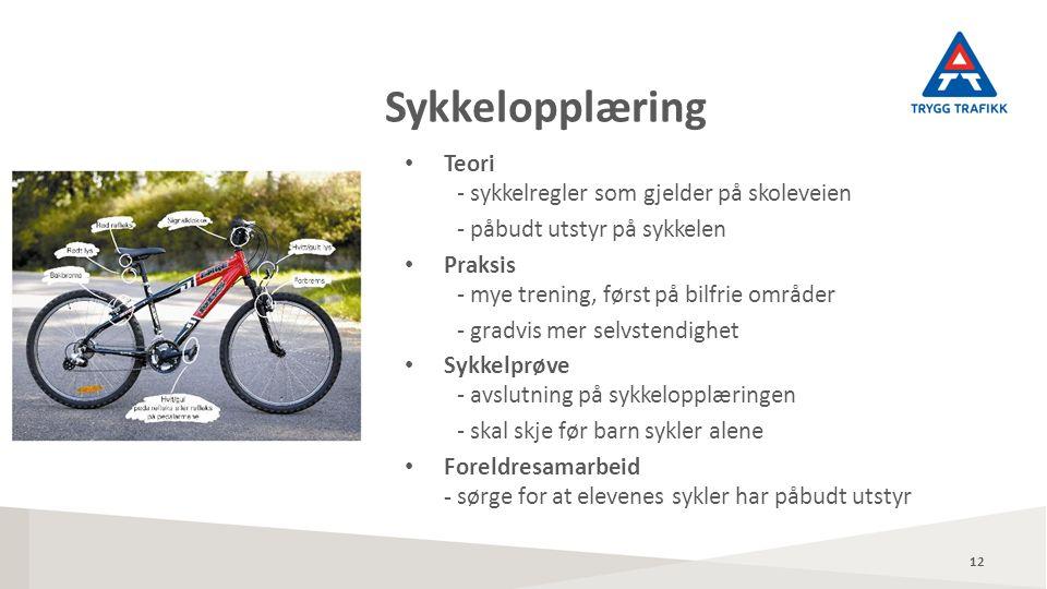 Teori - sykkelregler som gjelder på skoleveien - påbudt utstyr på sykkelen Praksis - mye trening, først på bilfrie områder - gradvis mer selvstendighet Sykkelprøve - avslutning på sykkelopplæringen - skal skje før barn sykler alene Foreldresamarbeid - sørge for at elevenes sykler har påbudt utstyr Sykkelopplæring 12