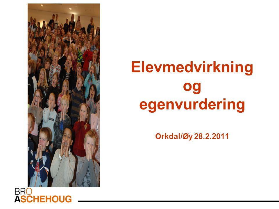 Elevmedvirkning og egenvurdering Orkdal/Øy 28.2.2011