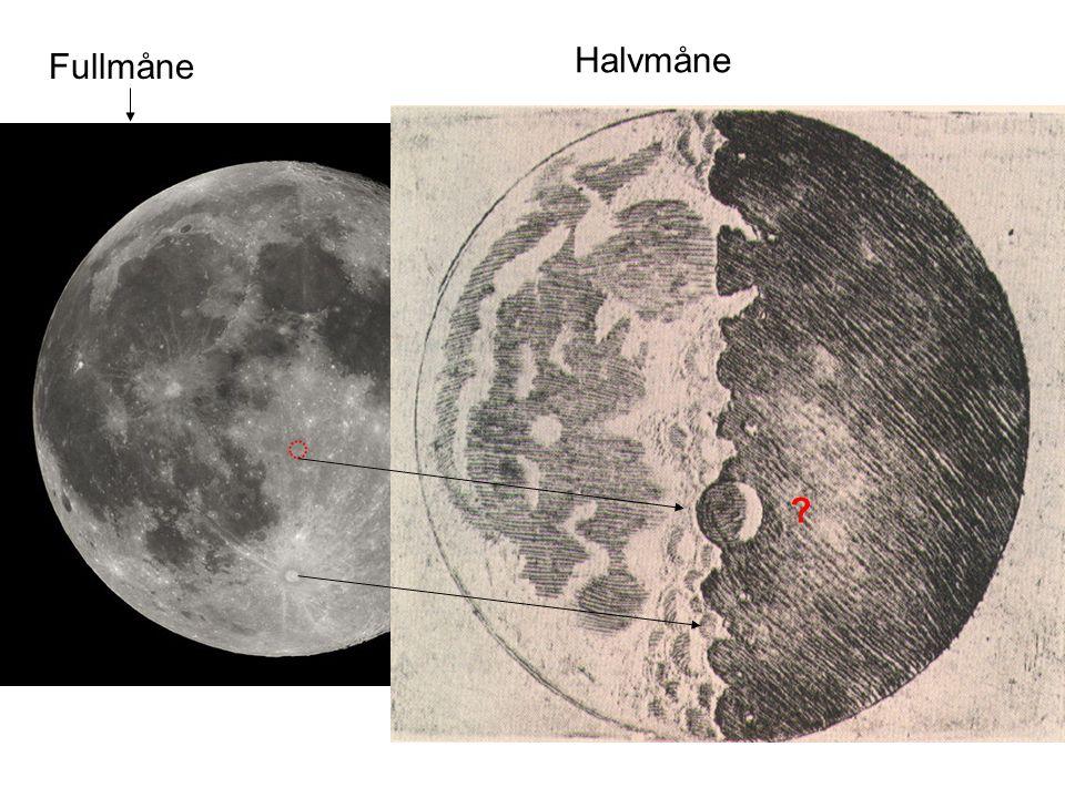 Fullmåne Halvmåne