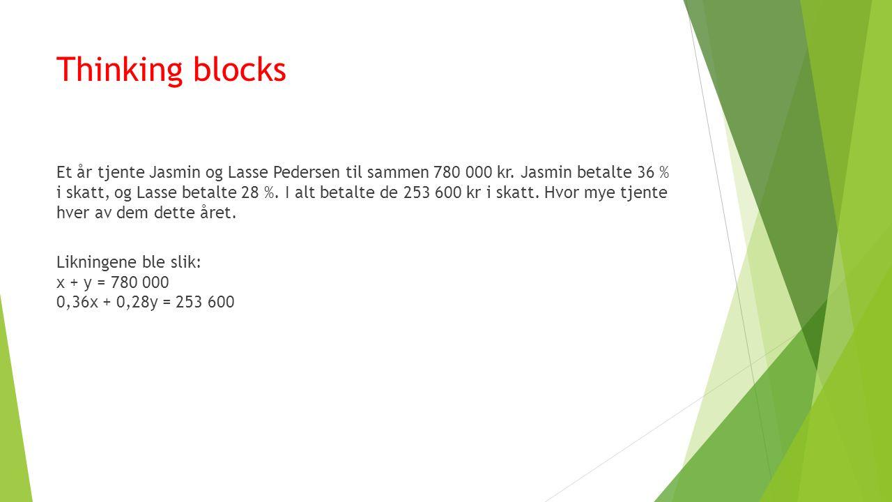 Thinking blocks Et år tjente Jasmin og Lasse Pedersen til sammen 780 000 kr.