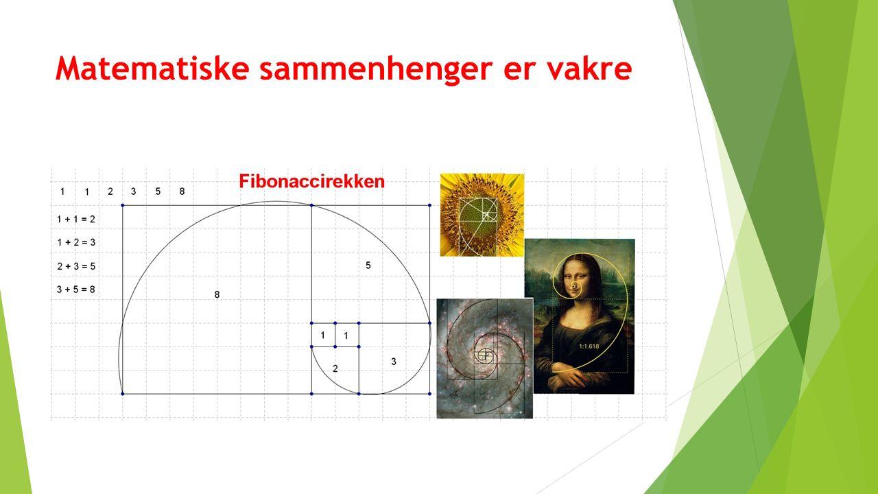 Matematiske sammenhenger er vakre