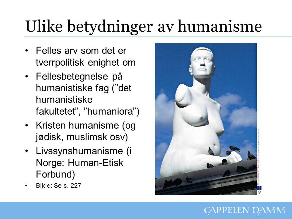 """Ulike betydninger av humanisme Felles arv som det er tverrpolitisk enighet om Fellesbetegnelse på humanistiske fag (""""det humanistiske fakultetet"""", """"hu"""