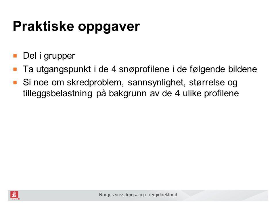 Norges vassdrags- og energidirektorat Praktiske oppgaver ■ Del i grupper ■ Ta utgangspunkt i de 4 snøprofilene i de følgende bildene ■ Si noe om skred