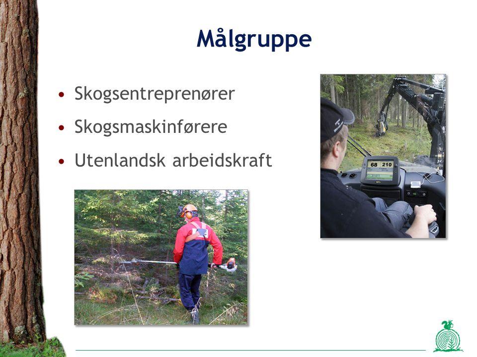 Målgruppe Skogsentreprenører Skogsmaskinførere Utenlandsk arbeidskraft