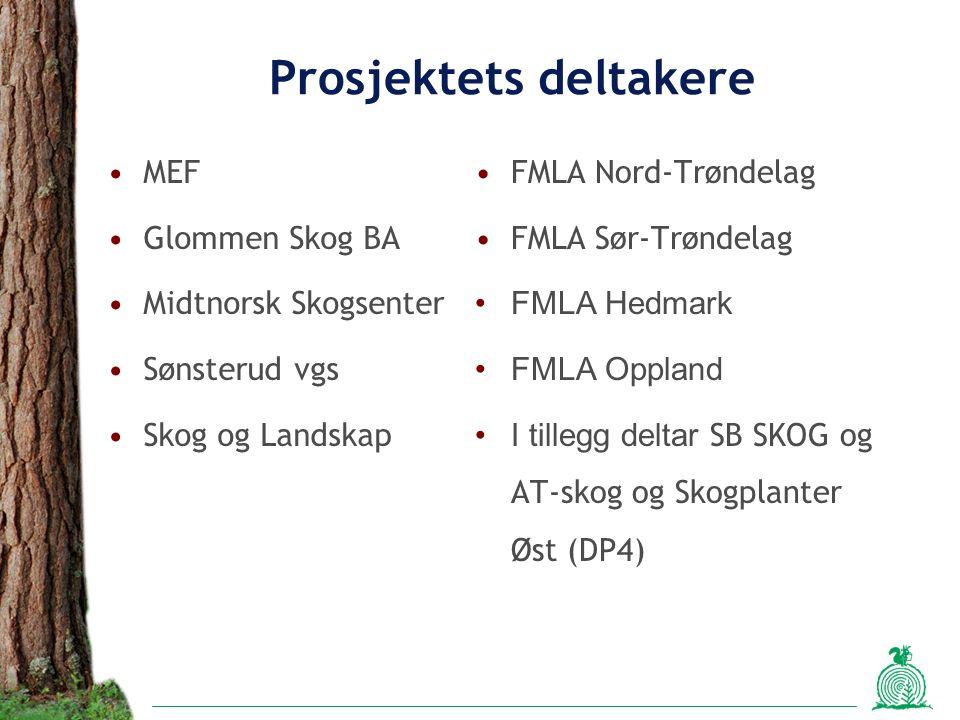 Prosjektets deltakere MEF Glommen Skog BA Midtnorsk Skogsenter Sønsterud vgs Skog og Landskap FMLA Nord-Trøndelag FMLA Sør-Trøndelag FMLA Hedmark FMLA Oppland I tillegg deltar SB SKOG og AT-skog og Skogplanter Øst (DP4)
