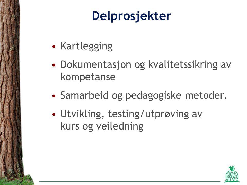 Delprosjekter Kartlegging Dokumentasjon og kvalitetssikring av kompetanse Samarbeid og pedagogiske metoder. Utvikling, testing/utprøving av kurs og ve